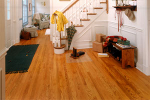 Daily Maintenance of Wood Floors